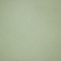 Algodão Cru - 21.11 - 180cm